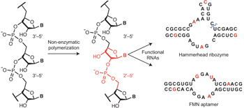 Engelhart_25RNAFunctionalRNA_NatChem_2013_GraphicalAbstract