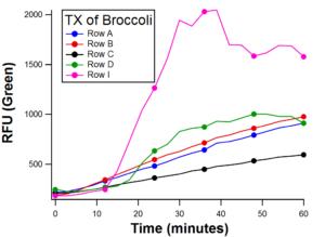 AM-BroccoliTX